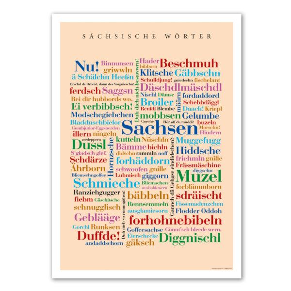 Die schönsten Wörter aus Sachsen auf einem Poster.