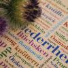 Postkarte Niederrheinische Wörter ist ein dekorativer Hingucker.